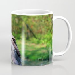 Immature Night Heron Coffee Mug
