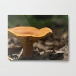 Sunset Mushroom Metal Print