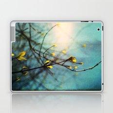Renewal Laptop & iPad Skin