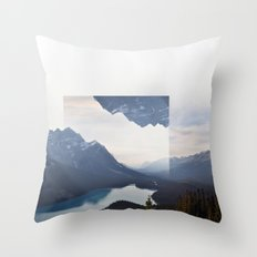 Vacant.  Throw Pillow