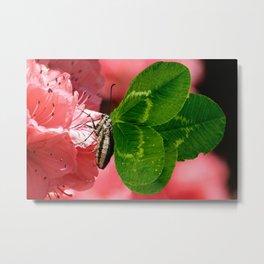 Lucky Butterfly Metal Print