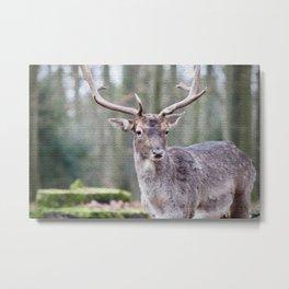 Deer Oil Painting  Metal Print