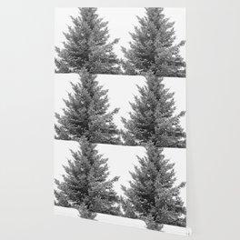 B&W White Spruce Wallpaper