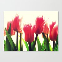 tulips Canvas Prints featuring Tulips by 2sweet4words Designs