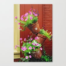 Potted Petunias Canvas Print