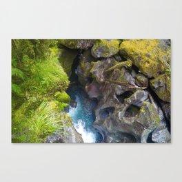 Milford Sounds, NZ Canvas Print