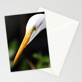 Below the Mangrove Trees Stationery Cards