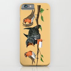 Cock Robin (Colour) iPhone 6s Slim Case