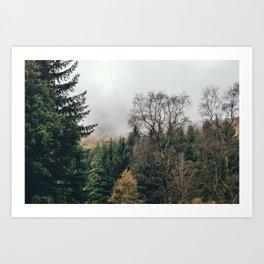 Trees and cloud near Blea Tarn. Cumbria UK. Art Print
