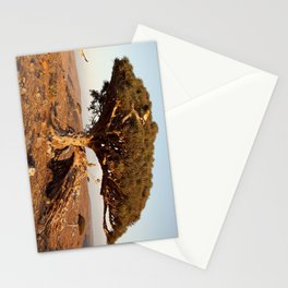 Socotra — dreams of the Lost Paradise Stationery Cards