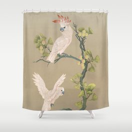 Moluccan Cockatoos Shower Curtain