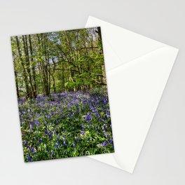 Bluebells Everdon Stubbs Wood Stationery Cards