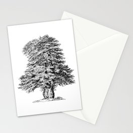 Old Tree Detailed Illustration Drawing Stationery Cards