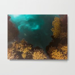 Into the lake Metal Print