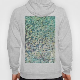 Mermaid Scales Hoody