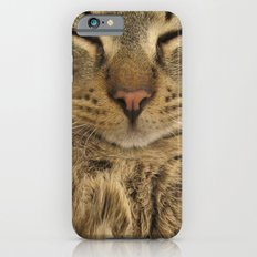 Cat Slim Case iPhone 6