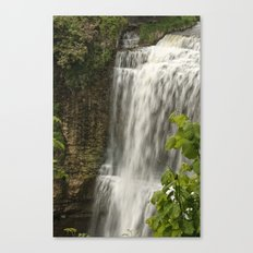 Webster Falls, Hamilton, Ontario Canvas Print