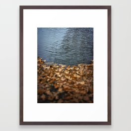 Leaves & Water Framed Art Print