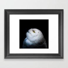 Winter White Snowy Owl Framed Art Print