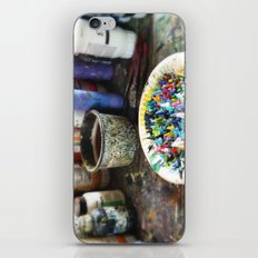 Plate of Colour iPhone & iPod Skin