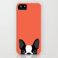 Boston Terrier iPhone (5, 5s) Slim Case