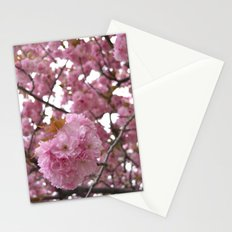 Hello Spring Stationery Cards
