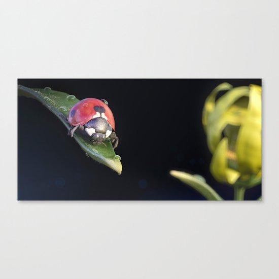Ladybug Journey Canvas Print