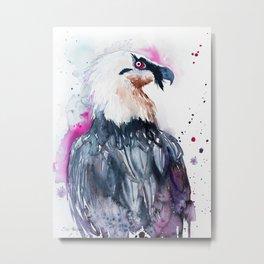 Bearded vulture Metal Print