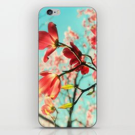 Spring dogwood blossoms iPhone Skin