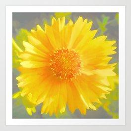 Yellow Wildflower - Coreopsis Art Print