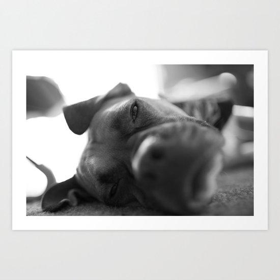 Lazy Dog Art Print