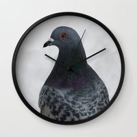 pigeon Wall Clocks featuring Pigeon  by Nature In Art...