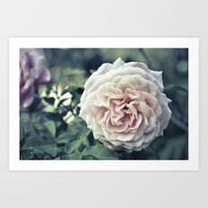 Roses are pink. Art Print