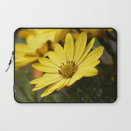 Yellow African daisy Laptop Sleeve