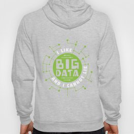 I Like Big Data And Cannot Lie Gift Hoody