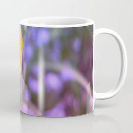 Yellow Buttercup, Purple Bokeh, Close Up, Coffee Mug