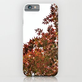 Changing of Seasons iPhone Case