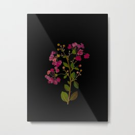 Lagerstroemia Indica Mary Delany British Botanical Paper Flower Collage Delicate Flowers Metal Print