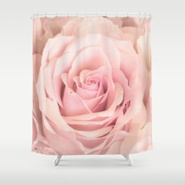 Delightful A Rose Is A Rose   Wonderful Pink Rose Flower Shower Curtain