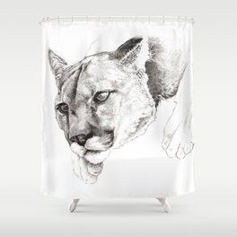 Sketch Of A Captived Mountain Lion Shower Curtain