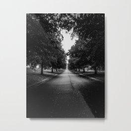 The Lone Walk Metal Print