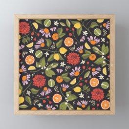 Citrus Grove Framed Mini Art Print