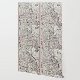 Vintage Minnesota & Iowa Railroad Map (1873) Wallpaper