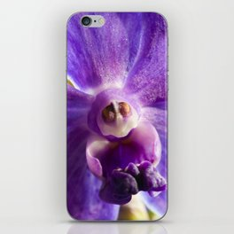 Orchid Vanda 91 iPhone Skin