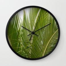 Palm Trees in Kauai Wall Clock