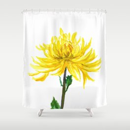 one yellow chrysanthemum Shower Curtain