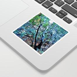 """Hillside Trees at Dusk"" Sticker"