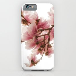 Magnolia tree, pretty pink blooms iPhone Case
