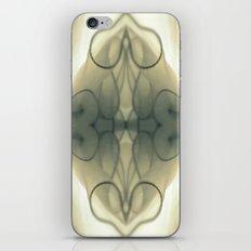 Hidden erotica iPhone & iPod Skin