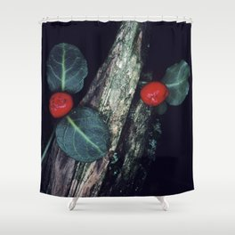 Exotic, Mysterious Cotoneaster Flowering Plant Shower Curtain